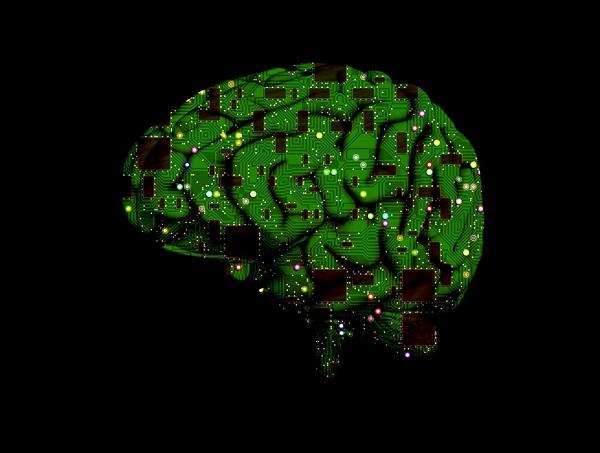 brain-1845944_960_720.jpg