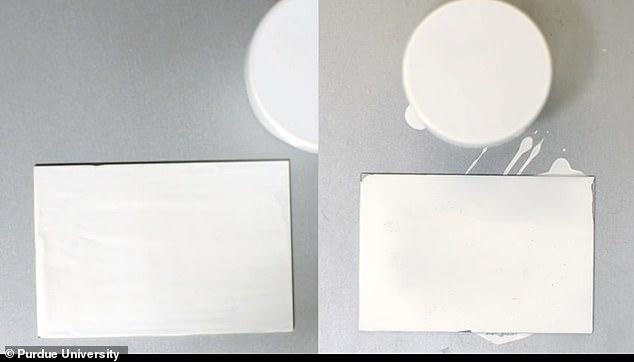 美科学家开发超白油漆 可反射95.5%阳光、降温10度
