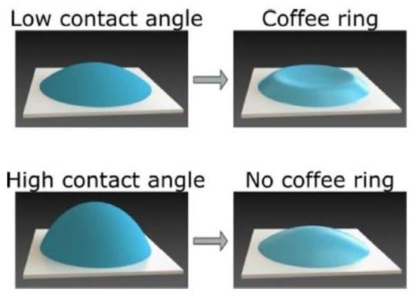 科學家終於揭開了「咖啡壞」效應背後的奧秘