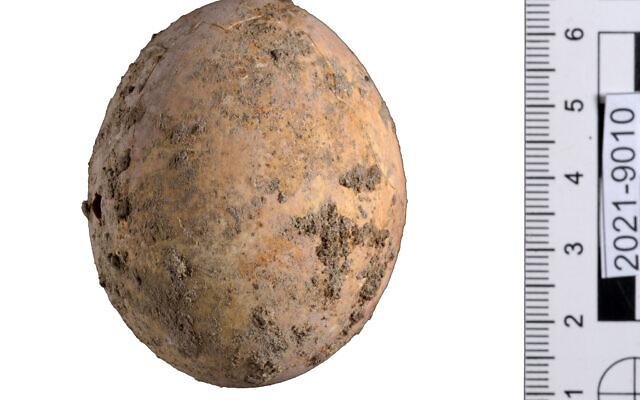 3.The-Egg.-Photo-Dafna-Gazit-Israel-Antiquities-Authority-640x400.jpg