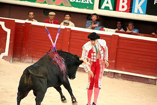 Toreador_Bullfight_Plaza_de_Toros_cancun_Mexico_2_102_(1077548273).jpg