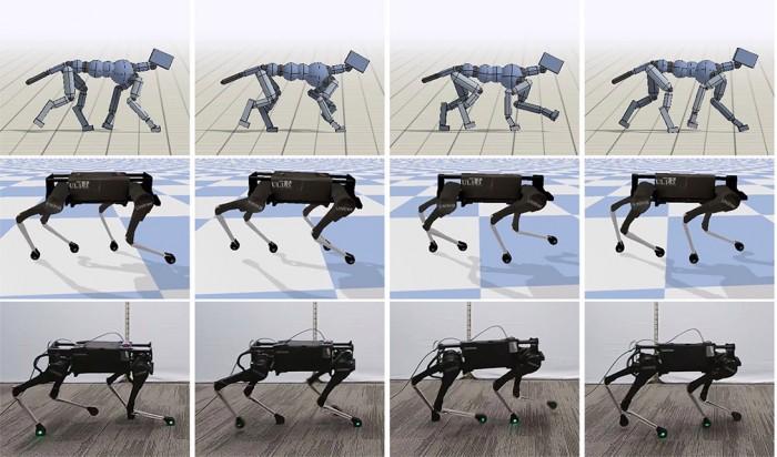 dogwalking.jpg