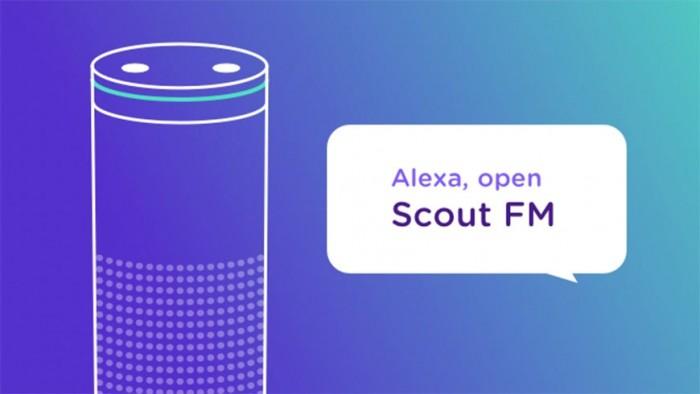 37915-71588-200924-ScoutFM-xl.jpg