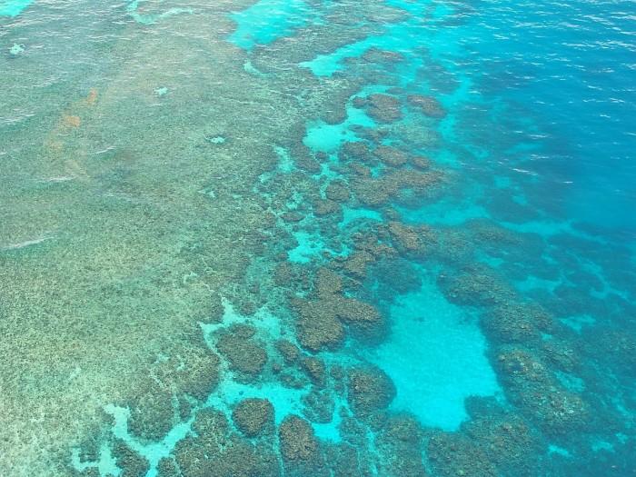 great-barrier-reef-261727_1280.jpg