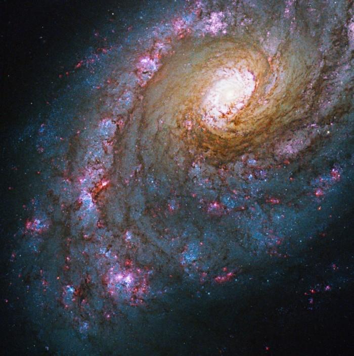 """哈勃图像展示业余天文学家可见的30颗宇宙""""宝石"""""""