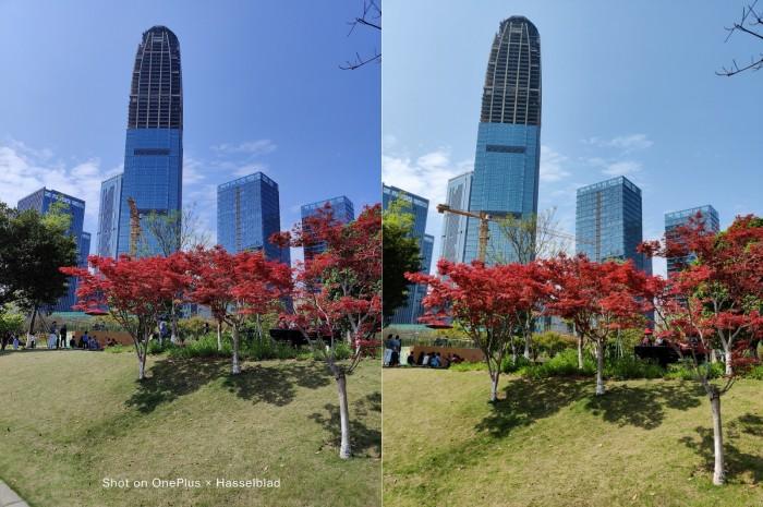 IMG_20210405_134232 Skyscraper.jpg