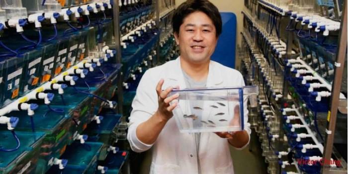 Kazu-Kikuchi-Victor-Chang-Cardiac-Research-Institute-777x389.jpg
