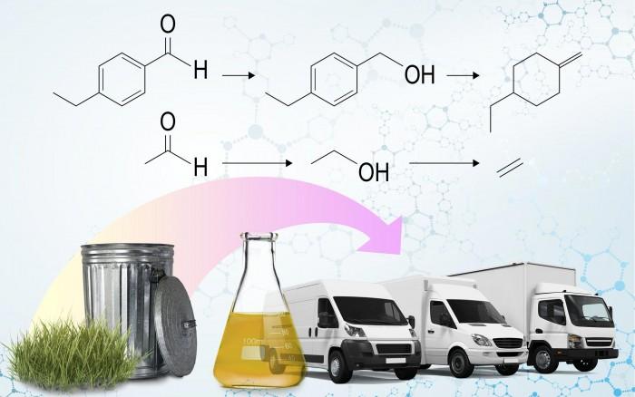Biofuel-for-Transportation.jpg