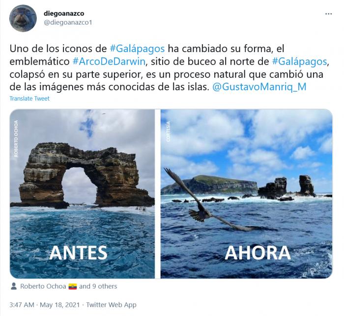 Screenshot_2021-05-19 diegoanazco on Twitter.png