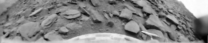 Venus-Surface-Venera-9-Lander.jpg