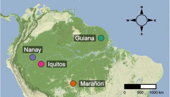 Cacao-Tree-Map.jpg