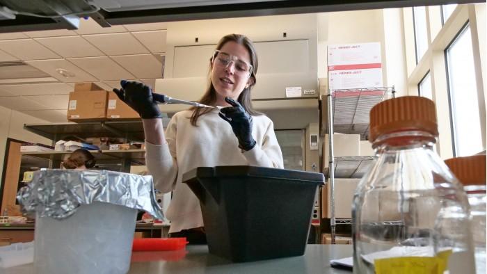Irene-Francino-Urdaniz-Spike-Protein-Research-scaled.jpg