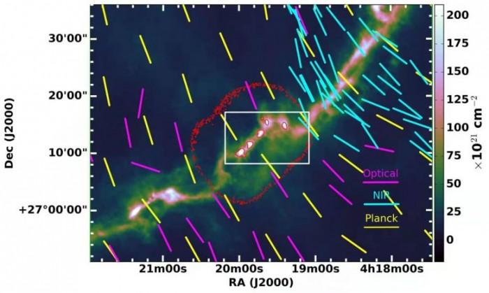 Uniform-Magnetic-Field-Morphology-of-Taurus-B213-Region-777x465.jpg