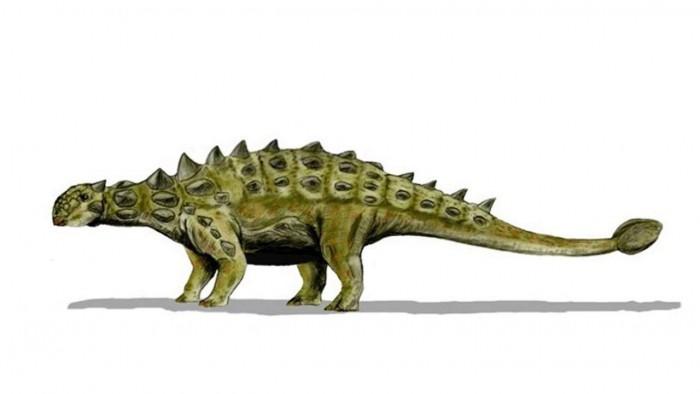 ankylosaur-dinoause-bizzare-armor-unique-details-1280x720.jpg