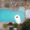 10万张纸巾能否吸干泳池?网红博主试了一下