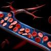科学家在血液循环中发现意想不到的新成分 - 线粒体