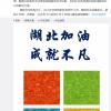 微软中国宣布向湖北省红十字基金会捐赠100万人民币