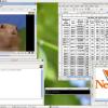 UNIX操作系统NetBSD 9.0发布 第17个主要版本