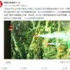 中国资源卫星应用中心调集6颗卫星成像38次 助力西昌山火救援