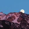 """下周二将出现的明亮""""粉红月亮""""是2020年最大的超级月亮"""