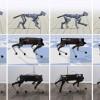 谷歌AI研究使机器狗更轻松地完成小跑等动作