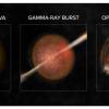 """天文学家用""""奶牛""""和""""考拉""""描述一类全新的太空信号"""