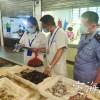 野生贝类被发现贝毒素超标 可能引发食物中毒