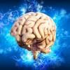 人类大脑是如何建立自我意识的?