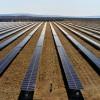 苹果公司承诺到2030年实现100%碳中和足迹