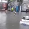 惊险:暴雨积水女子在路面游泳 结果险被卷入车底