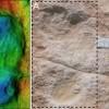 12万年前足迹提供了人类在阿拉伯半岛居住的早期证据