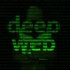 179名网络犯罪分子被捕 国际警察警告暗网黄金时代已结束