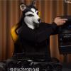 B站狗头Up主抢跑评测:NVIDIA要取消RTX 3090/3070国内首发资格?