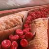 研究警告:拥有高胆固醇的年轻人面临着极高的健康风险