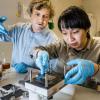 科学家打造出首款由全有机材料制成的氧化还原液流电池
