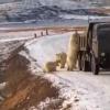 """全球变暖导致冰川加速消融 饥饿北极熊""""打劫""""垃圾车"""