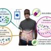 科研团队发现的新联合疗法或能帮助对抗细菌的耐药性