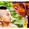 86版《西游记》红孩儿演员 如今已是中科院博士
