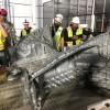 特斯拉超级工厂已可冲压130公斤压铸件 零件大幅减少