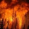 探测山火,无人机的另一种打开方式