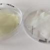 用芒果叶制成的生物活性塑料可保护食物免受病原体和紫外线影响