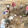 蒙大拿州的化石新发现几乎完整记录了恐龙时代末期的场景