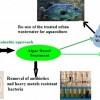 研究发现利用藻类净化后的废水可被用于水产养殖